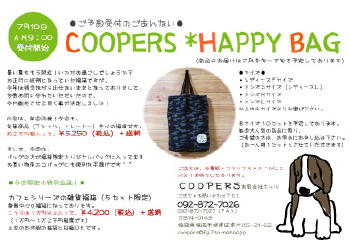 blog2518.jpg